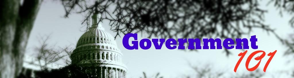 Government 101 Logo