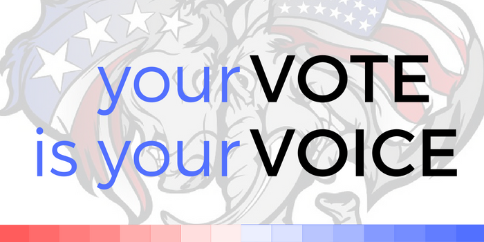Your_Vote_Is_Your_Voice